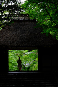 初夏を楽しもう! 哲学の道 周辺 散策撮影会(6月17日) @ 哲学の道 周辺 | 京都市 | 京都府 | 日本