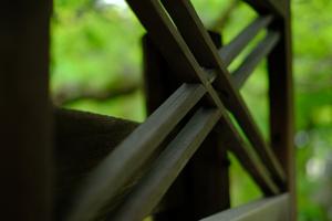 初夏を楽しもう! 洛北 鷹ヶ峯周辺 散策撮影会(6月15日) @ 鷹ヶ峯周辺 | 京都市 | 京都府 | 日本