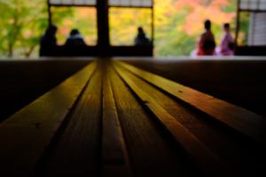 赤山禅院から圓光寺まで一日満喫!! 散策撮影会(11月11日) @ 京都市 | 京都府 | 日本