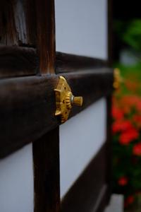 ゆったりと伏見周辺 散策 撮影会(5月19日) 京都 @ 京都市 | 京都府 | 日本