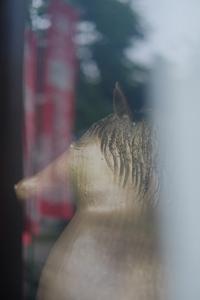 ゆったりと伏見周辺 散策 撮影会(5月22日) 京都 @ 京都市 | 京都府 | 日本