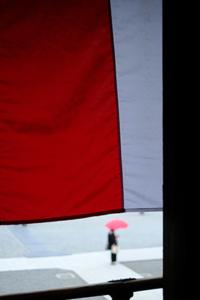 市バス(9系統)でまわる寺社巡り 散策 撮影会 (10月9日) 京都 @ 京都市 | 京都府 | 日本