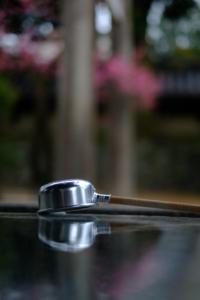梅の北野天満宮から御室仁和寺へ 散策撮影会(3月2日) @ 京都市 | 京都府 | 日本