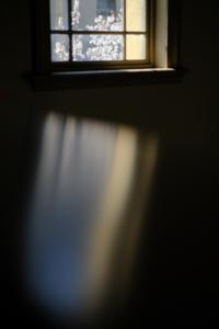 夕刻の桜 京都御苑周辺散策撮影会(3月27日) 京都 @ 京都市 | 京都府 | 日本