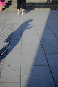 作品研究会 8月の花まる写真教室(8月24日) @ 塩見税理士事務所 会議室 | 京都市 | 京都府 | 日本