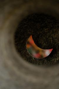 京の美 東山方面周辺 散策 撮影会  (11月26日) 京都 @ 京都市 | 京都府 | 日本