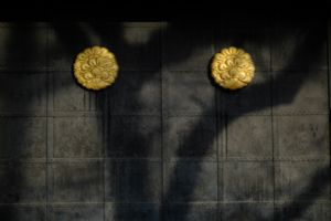 作品研究会 7月の花まる写真教室(7月27日) @ 塩見税理士事務所 会議室   京都市   京都府   日本