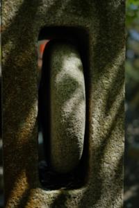 作品研究会 6月の花まる写真教室(6月22日) @ 塩見税理士事務所 会議室   京都市   京都府   日本