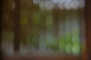 春探し 伏見 周辺 散策 撮影会 3月8日 京都 @ 京都市 | 京都府 | 日本