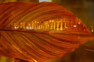 番外編で大阪へ 御堂筋ナイトストリート(写真展「京の彩り」見た後で) 9月15日 @ 京都市 | 京都府 | 日本