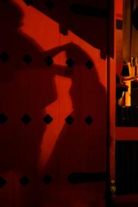 ゆったり5名 ナイトフォト 夜の伏見稲荷 散策撮影会 7月20日 京都 @ 京都市 | 京都府 | 日本