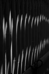 晩秋をゆっくり 南禅寺周辺 散策 撮影会 12月2日 京都 @ 京都市 | 京都府 | 日本