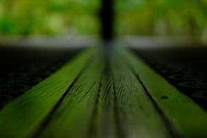 春探し 圓光寺でゆったり  撮影会  3月7日 京都 @ 京都市 | 京都府 | 日本