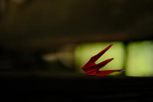 御室八十八ヶ所霊場 散策撮影会  5月12日 京都 @ 京都市 | 京都府 | 日本